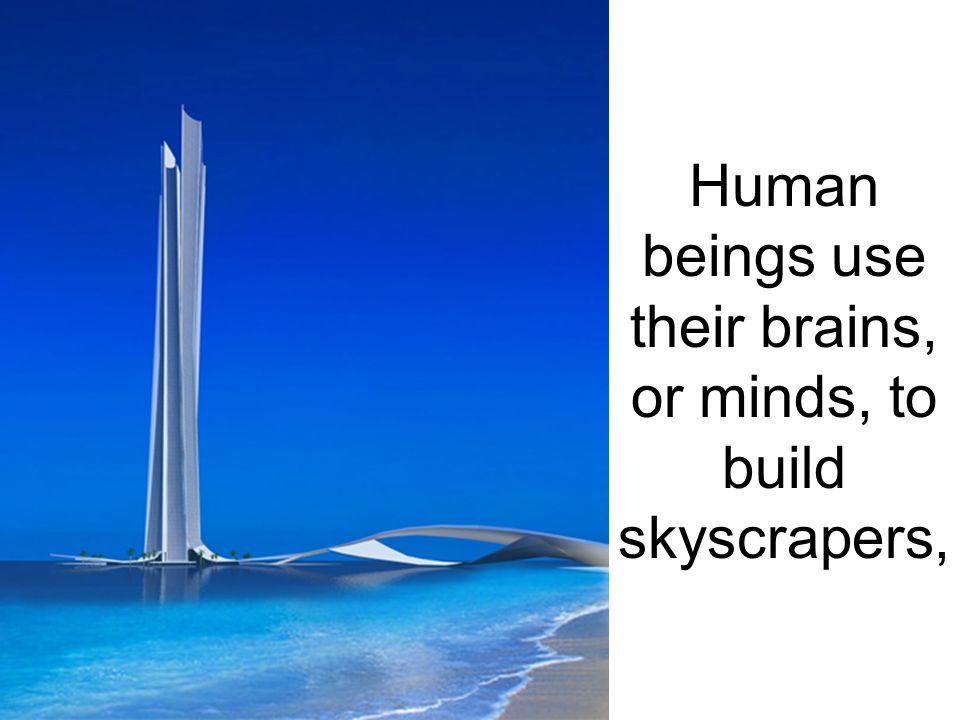 Human beings use their brains, or minds, to build skyscrapers,