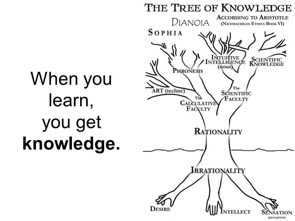 When you learn, you get knowledge.
