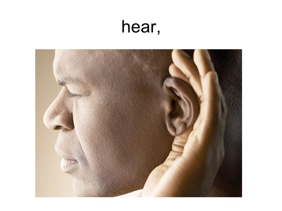 hear,