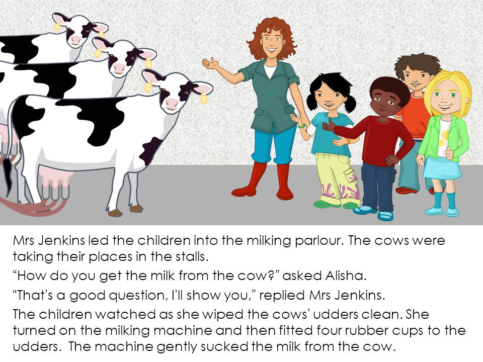 Mrs Jenkins led the children into the milking parlour.