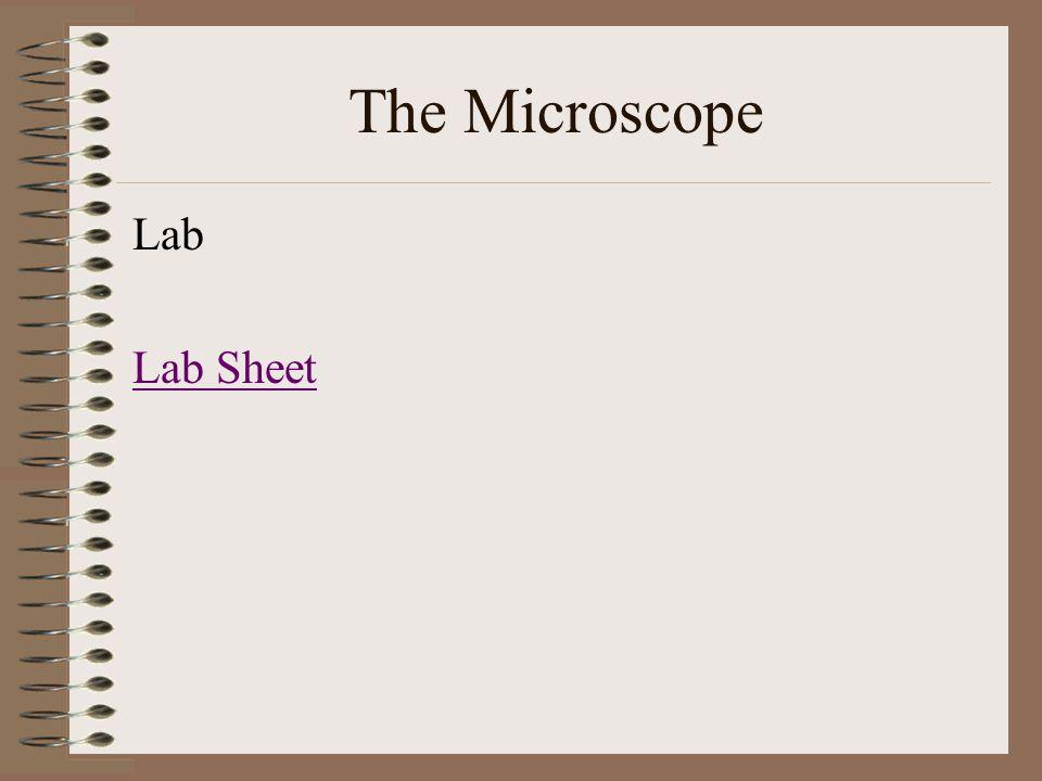 The Microscope Lab Lab Sheet