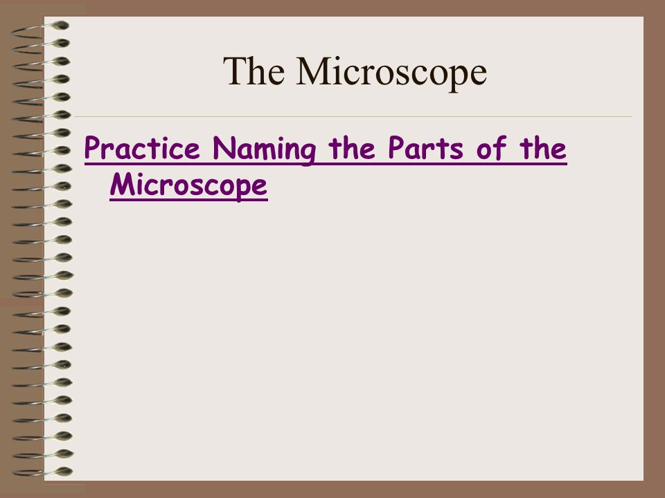 The Microscope Practice Naming the Parts of the Microscope