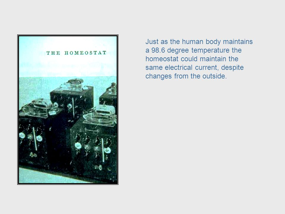 The human body is such a marvel of self-regulation that early cyberneticians studied its processes and used it as a model to design machines that were self- regulating.