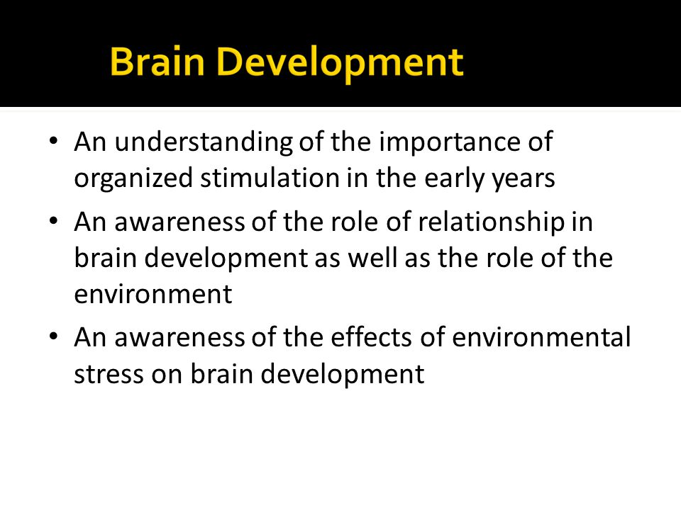 An understanding of the importance of organized stimulation in the early years An awareness of the role of relationship in brain development as well a