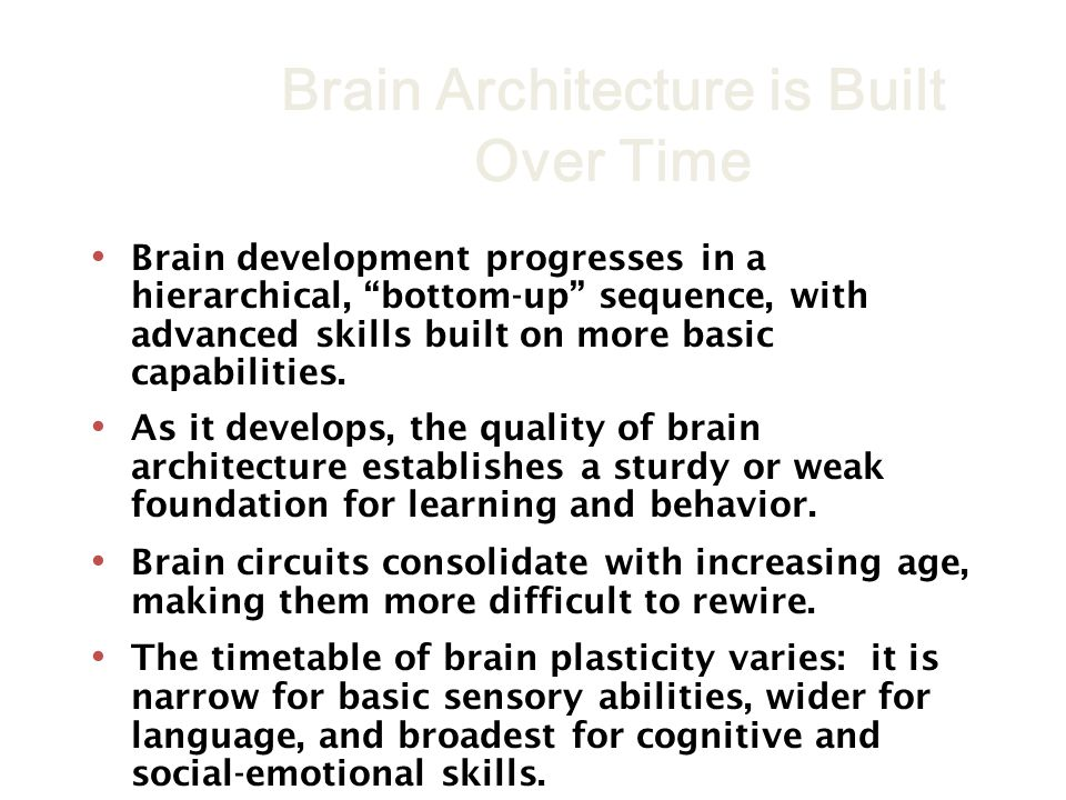Brain development progresses in a hierarchical, bottom-up sequence, with advanced skills built on more basic capabilities. As it develops, the quality