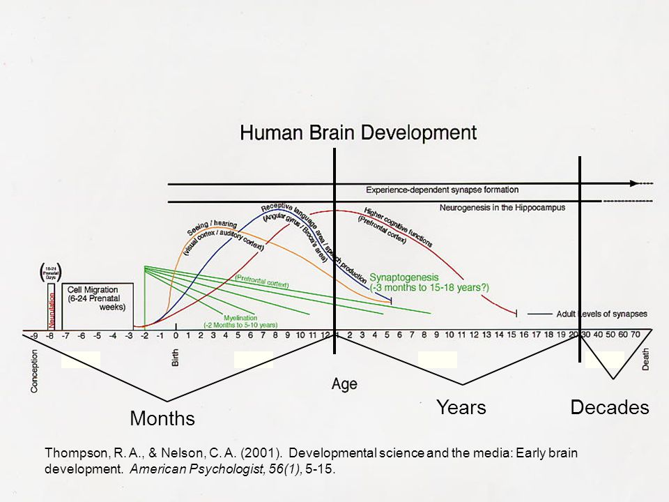 Thompson, R. A., & Nelson, C. A. (2001). Developmental science and the media: Early brain development. American Psychologist, 56(1), 5-15. Months Year