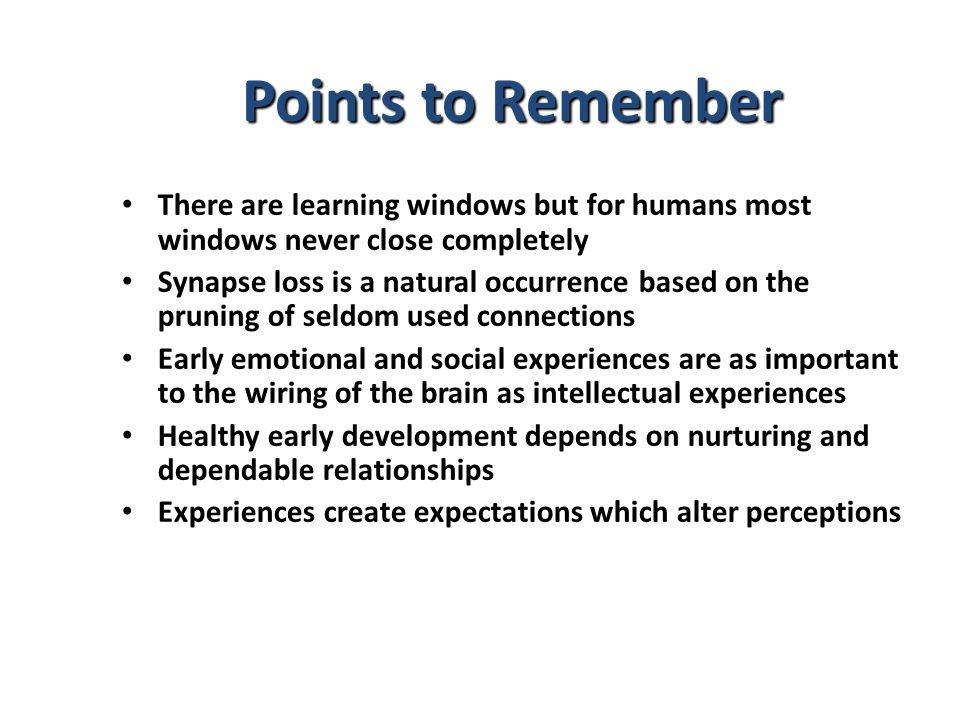 There are learning windows but for humans most windows never close completely Synapse loss is a natural occurrence based on the pruning of seldom used
