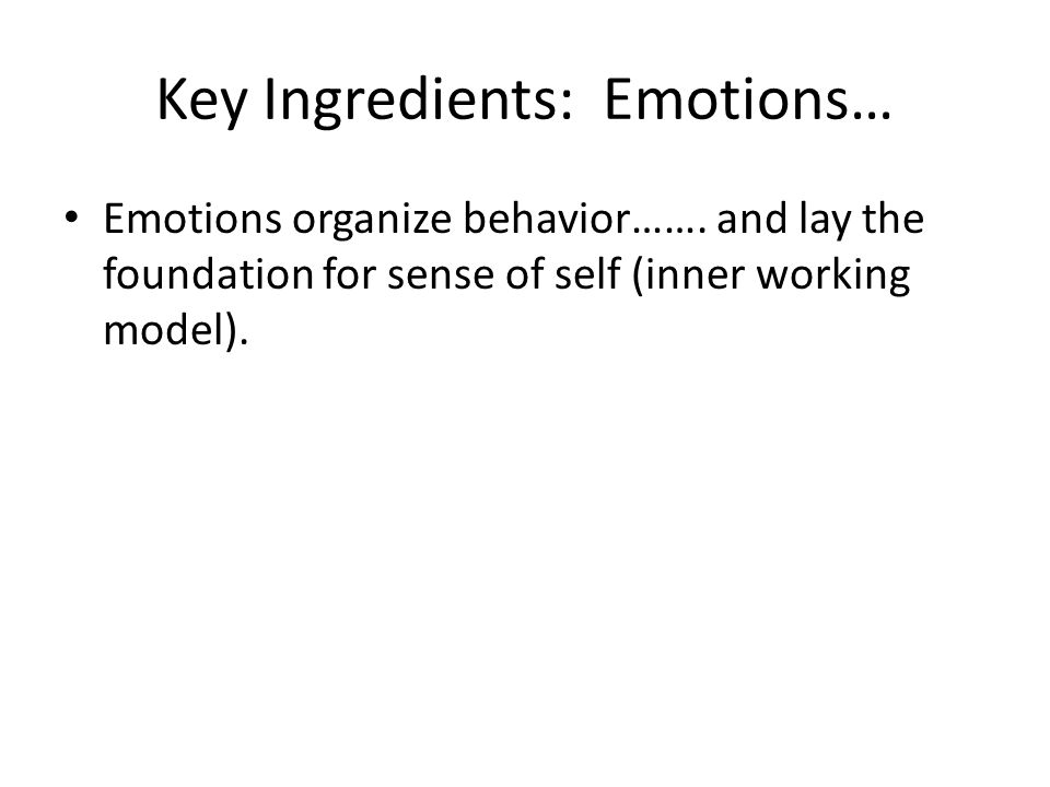 Key Ingredients: Emotions… Emotions organize behavior……. and lay the foundation for sense of self (inner working model).