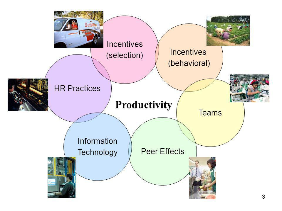 HR Practices Incentives (selection) Productivity Incentives (behavioral) Teams Peer Effects Information Technology 3