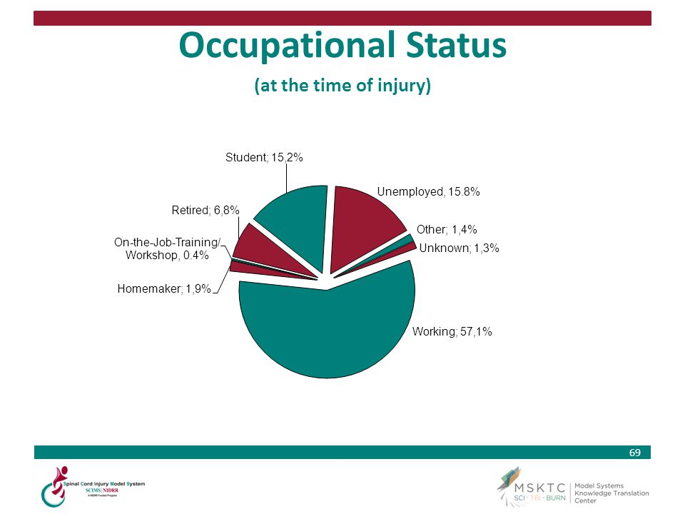 69 Occupational Status (at the time of injury)