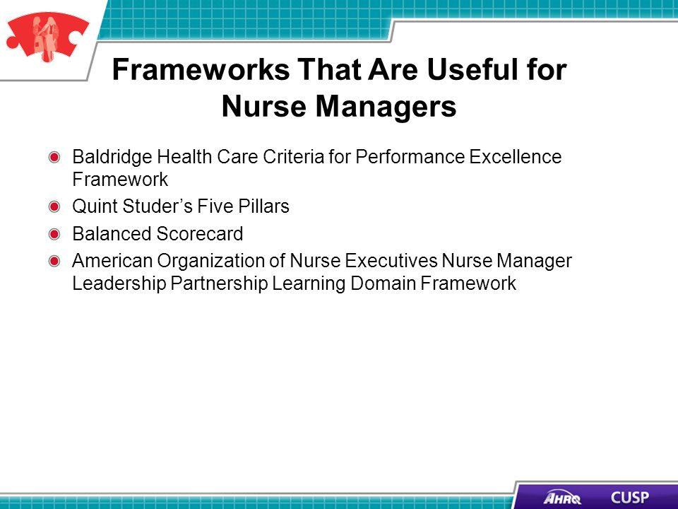 Frameworks That Are Useful for Nurse Managers Baldridge Health Care Criteria for Performance Excellence Framework Quint Studers Five Pillars Balanced Scorecard American Organization of Nurse Executives Nurse Manager Leadership Partnership Learning Domain Framework