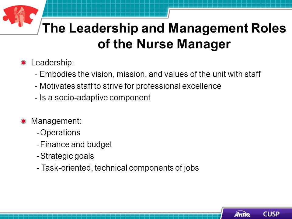 The Leadership and Management Roles of the Nurse Manager Leadership: - Embodies the vision, mission, and values of the unit with staff - Motivates staff to strive for professional excellence - Is a socio-adaptive component Management: -Operations -Finance and budget -Strategic goals - Task-oriented, technical components of jobs