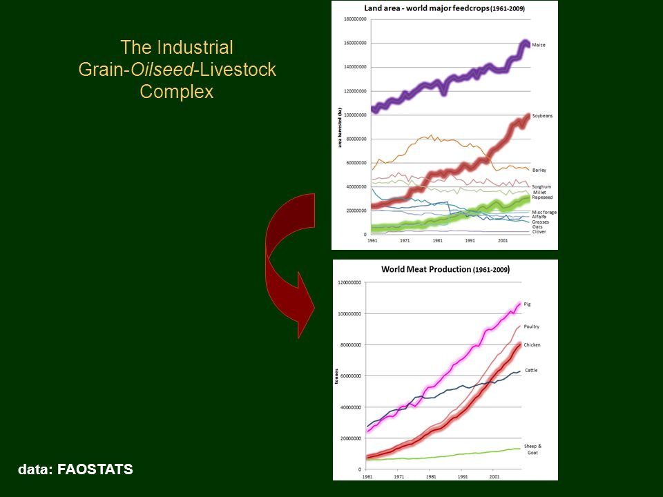 The Industrial Grain-Oilseed-Livestock Complex data: FAOSTATS