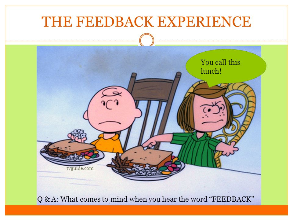 THE FEEDBACK EXPERIENCE tvguide.com Q & A: What comes to mind when you hear the word FEEDBACK You call this lunch!