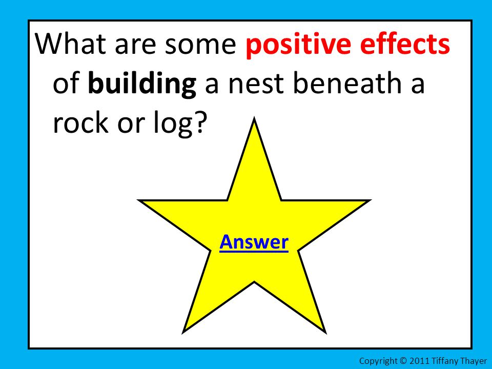 What are some positive effects of building a nest beneath a rock or log? Answer Copyright © 2011 Tiffany Thayer