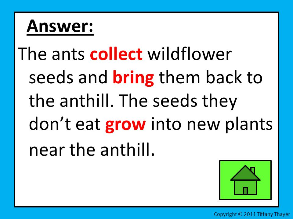 Answer: The ants collect wildflower seeds and bring them back to the anthill. The seeds they dont eat grow into new plants near the anthill. Copyright