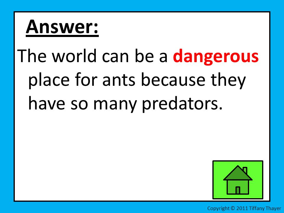 Answer: The world can be a dangerous place for ants because they have so many predators. Copyright © 2011 Tiffany Thayer
