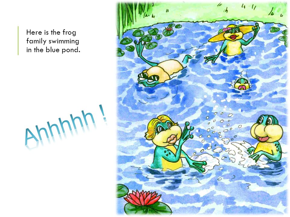 Here is the frog family swimming in the blue pond.