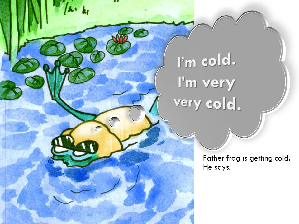 Father frog is getting cold. He says:
