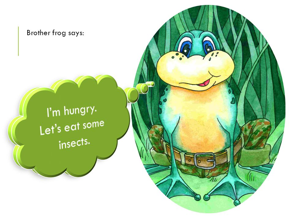 Brother frog says: