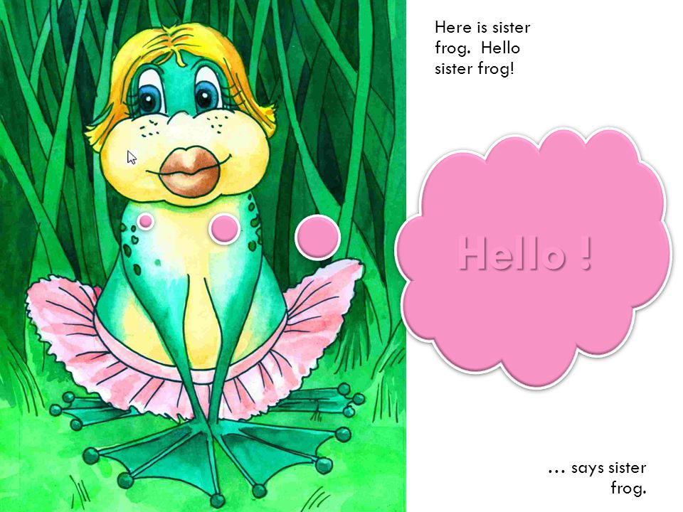 Here is sister frog. Hello sister frog! … says sister frog. Hello !