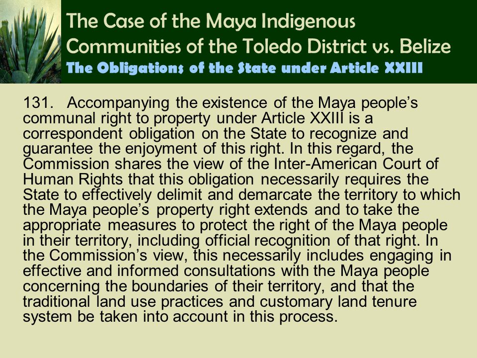 The Case of the Maya Indigenous Communities of the Toledo District vs. Belize The Obligations of the State under Article XXIII 131. Accompanying the e