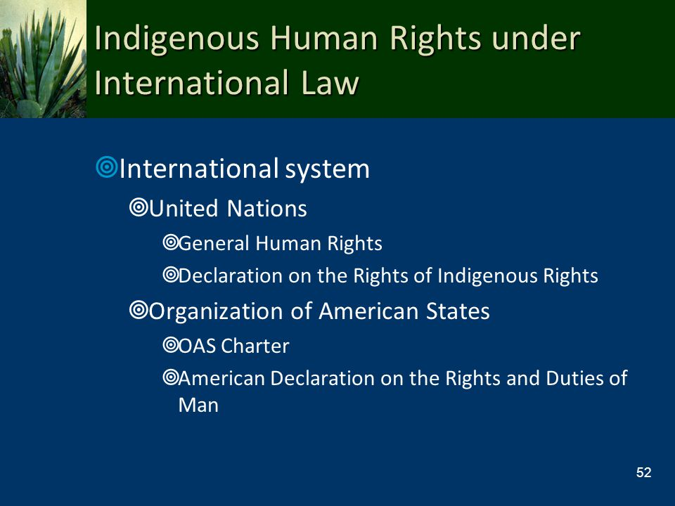 Indigenous Human Rights under International Law International system United Nations General Human Rights Declaration on the Rights of Indigenous Right