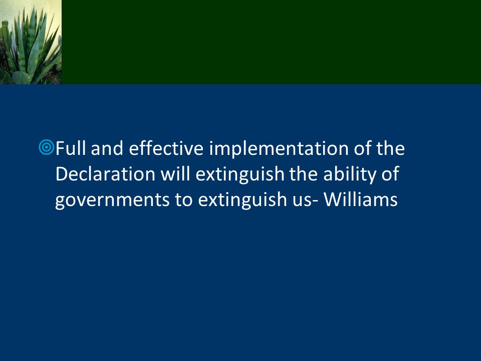 Full and effective implementation of the Declaration will extinguish the ability of governments to extinguish us- Williams
