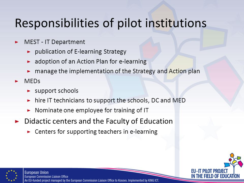 Responsibilities of pilot institutions MEST - IT Department publication of E-learning Strategy adoption of an Action Plan for e-learning manage the im