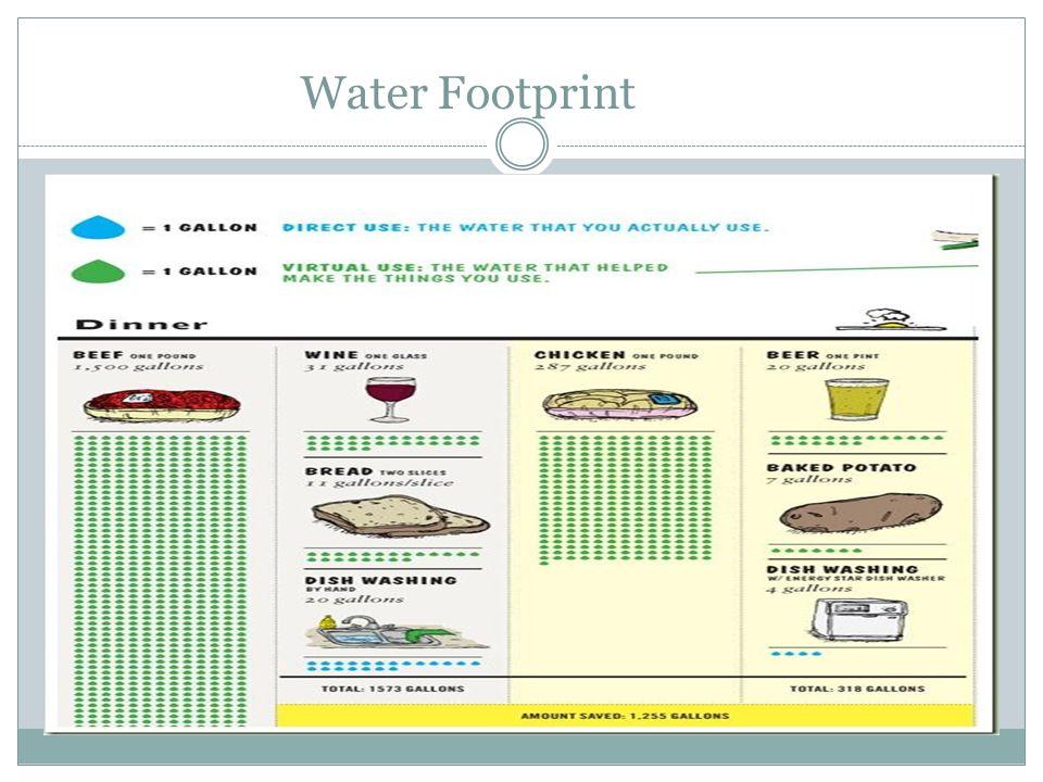 Water Footprint