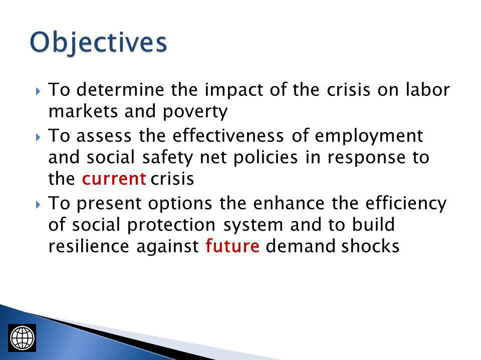 To determine the impact of the crisis on labor markets and poverty To assess the effectiveness of employment and social safety net policies in respons