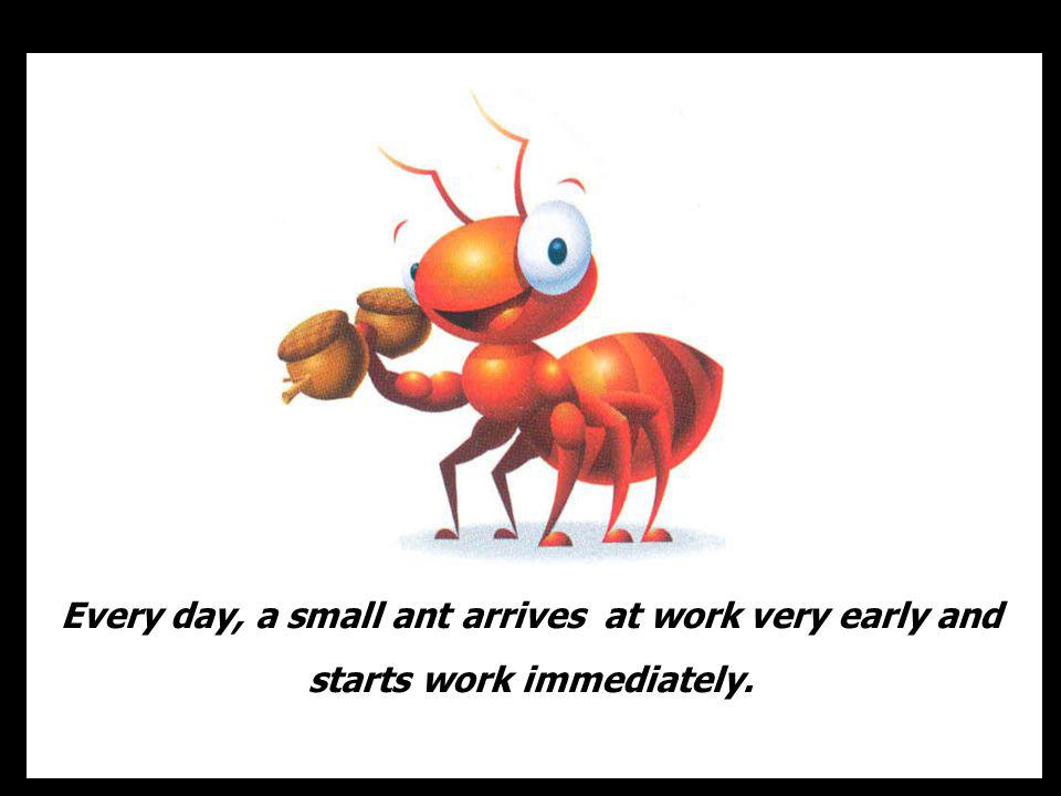 The ant, of course, because she showed lack of motivation and had a negative attitude .