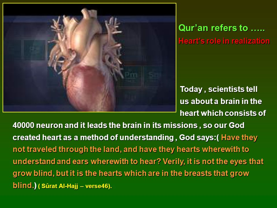 Today, scientists tell Today, scientists tell us about a brain in the us about a brain in the heart which consists of 40000 neuron and it leads the br
