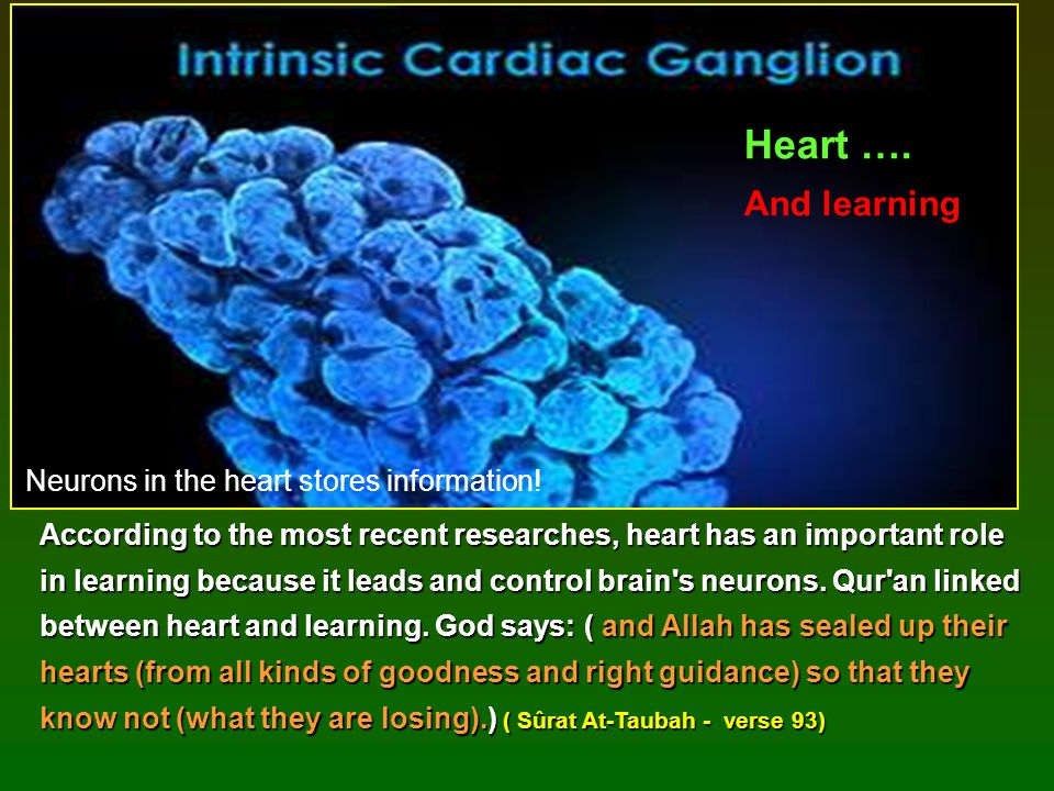 According to the most recent researches, heart has an important role in learning because it leads and control brain's neurons. Qur'an linked between h