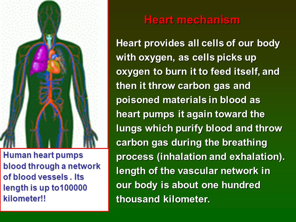 In heart math institute they In heart math institute they found that heart has a very found that heart has a very strong electrical field strong electrical field which affects all surrounding people.