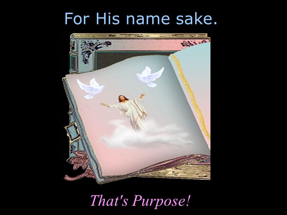 For His name sake. That's Purpose!