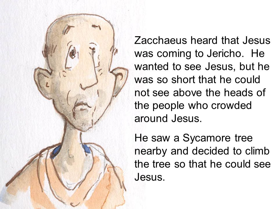 Zacchaeus heard that Jesus was coming to Jericho. He wanted to see Jesus, but he was so short that he could not see above the heads of the people who