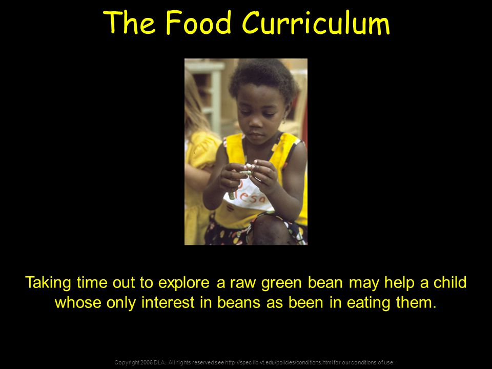 Copyright 2006 DLA. All rights reserved see http://spec.lib.vt.edu/policies/conditions.html for our conditions of use. The Food Curriculum Taking time