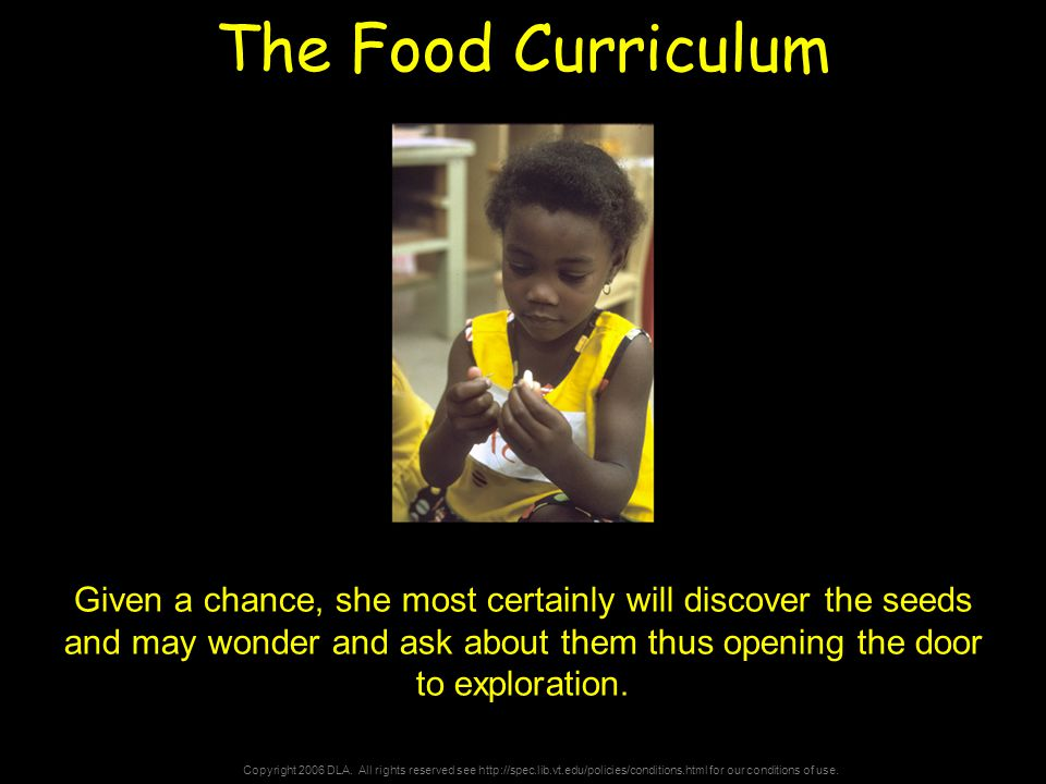 Copyright 2006 DLA. All rights reserved see http://spec.lib.vt.edu/policies/conditions.html for our conditions of use. The Food Curriculum Given a cha