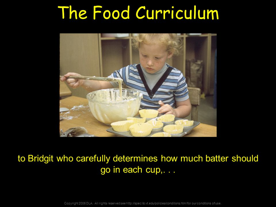 Copyright 2006 DLA. All rights reserved see http://spec.lib.vt.edu/policies/conditions.html for our conditions of use. The Food Curriculum to Bridgit