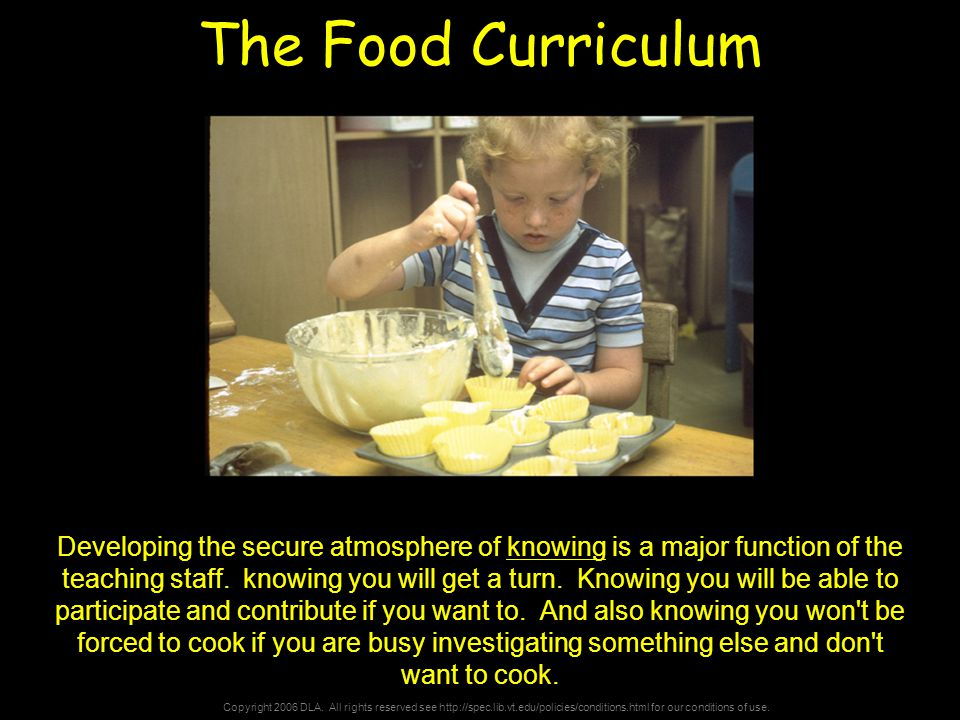 Copyright 2006 DLA. All rights reserved see http://spec.lib.vt.edu/policies/conditions.html for our conditions of use. The Food Curriculum Developing
