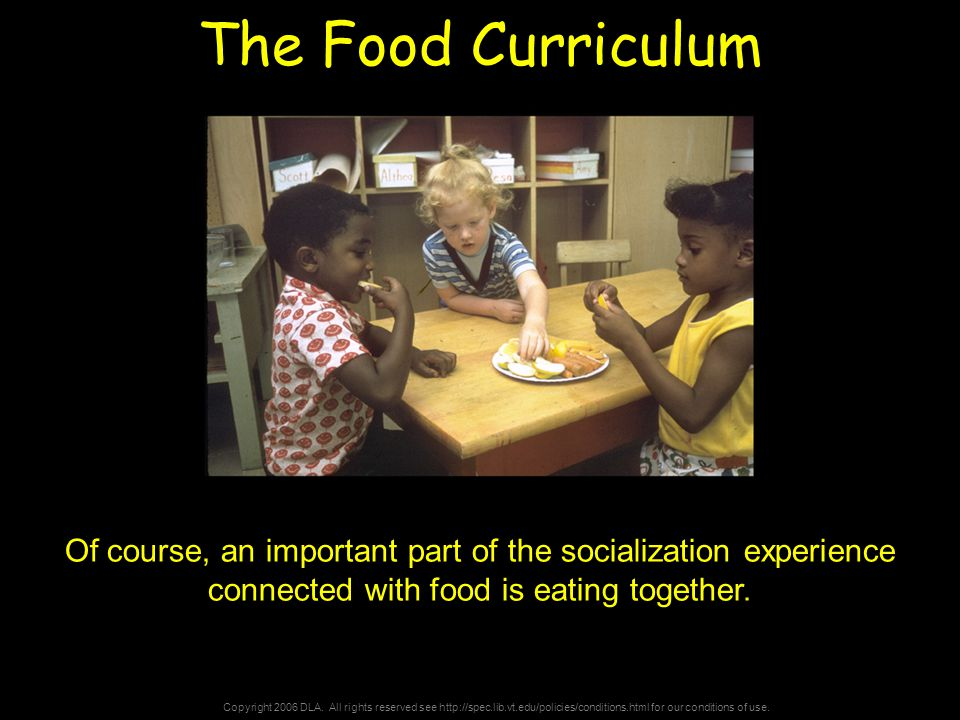 Copyright 2006 DLA. All rights reserved see http://spec.lib.vt.edu/policies/conditions.html for our conditions of use. The Food Curriculum Of course,