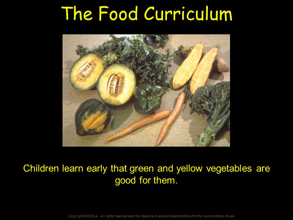 Copyright 2006 DLA. All rights reserved see http://spec.lib.vt.edu/policies/conditions.html for our conditions of use. The Food Curriculum Children le