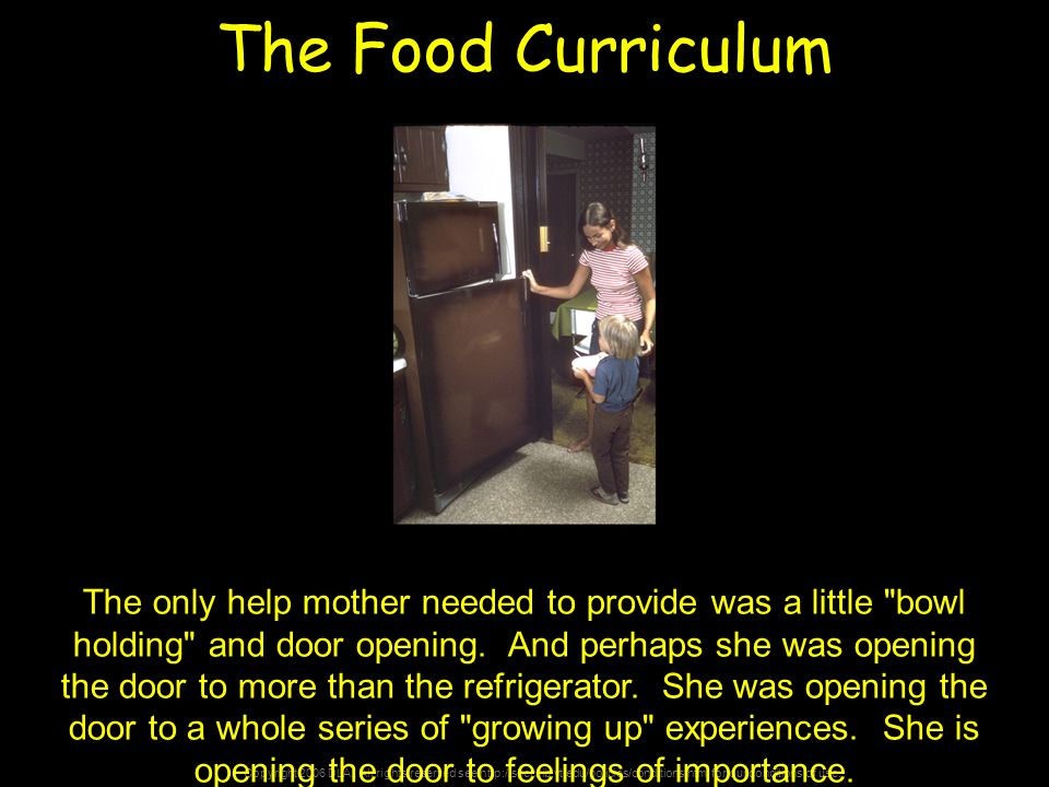 Copyright 2006 DLA. All rights reserved see http://spec.lib.vt.edu/policies/conditions.html for our conditions of use. The Food Curriculum The only he