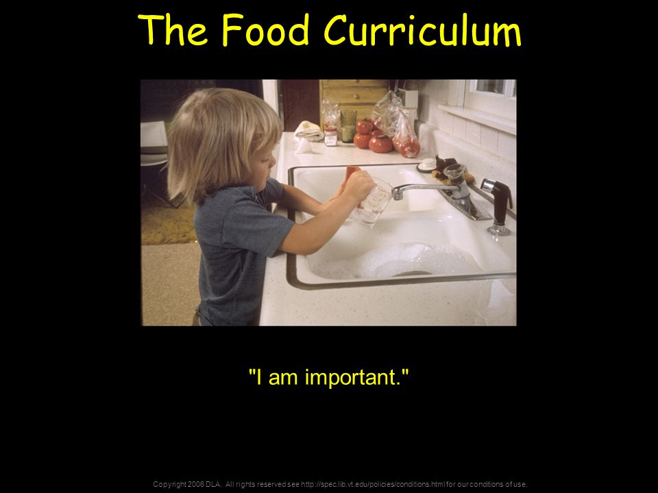 Copyright 2006 DLA. All rights reserved see http://spec.lib.vt.edu/policies/conditions.html for our conditions of use. The Food Curriculum