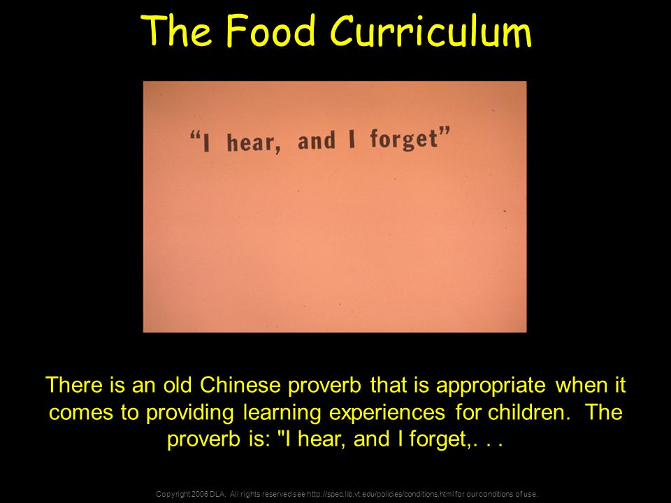 Copyright 2006 DLA. All rights reserved see http://spec.lib.vt.edu/policies/conditions.html for our conditions of use. The Food Curriculum There is an