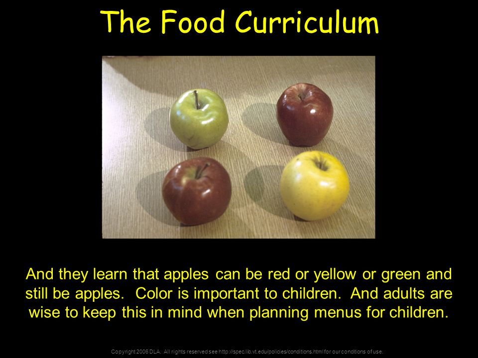 Copyright 2006 DLA. All rights reserved see http://spec.lib.vt.edu/policies/conditions.html for our conditions of use. The Food Curriculum And they le