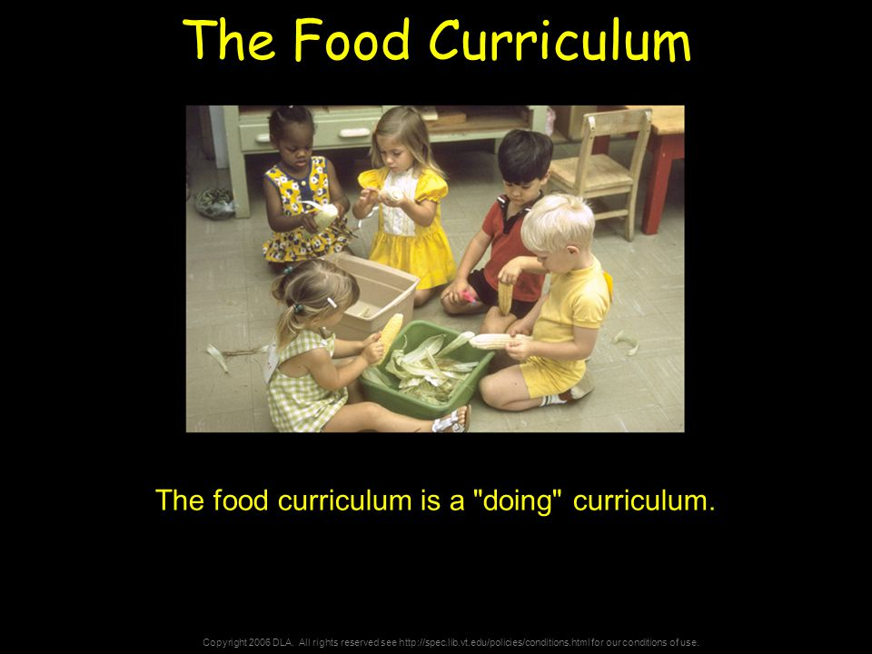 Copyright 2006 DLA. All rights reserved see http://spec.lib.vt.edu/policies/conditions.html for our conditions of use. The Food Curriculum The food cu