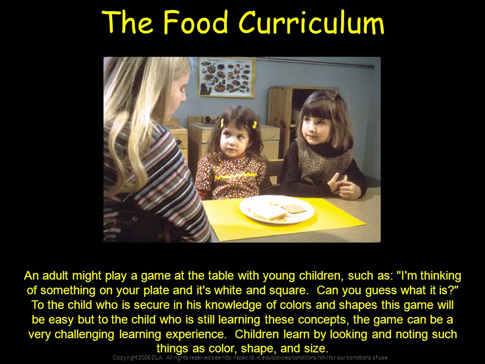 Copyright 2006 DLA. All rights reserved see http://spec.lib.vt.edu/policies/conditions.html for our conditions of use. The Food Curriculum An adult mi