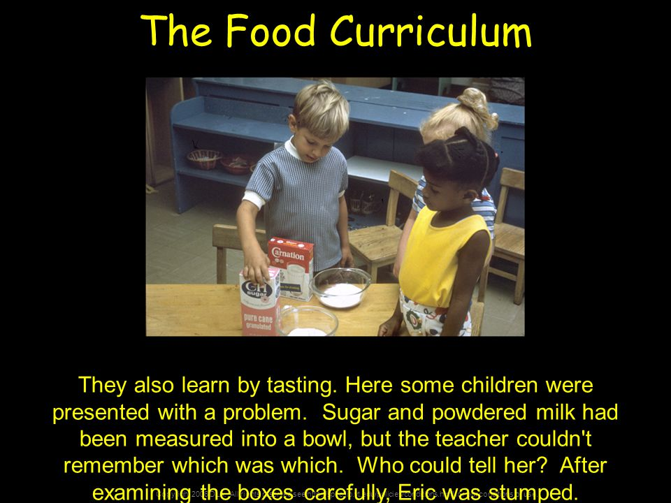 Copyright 2006 DLA. All rights reserved see http://spec.lib.vt.edu/policies/conditions.html for our conditions of use. The Food Curriculum They also l